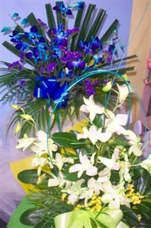 Playford Locality List  Image . This photo sponsored by Florists - Retail Category.